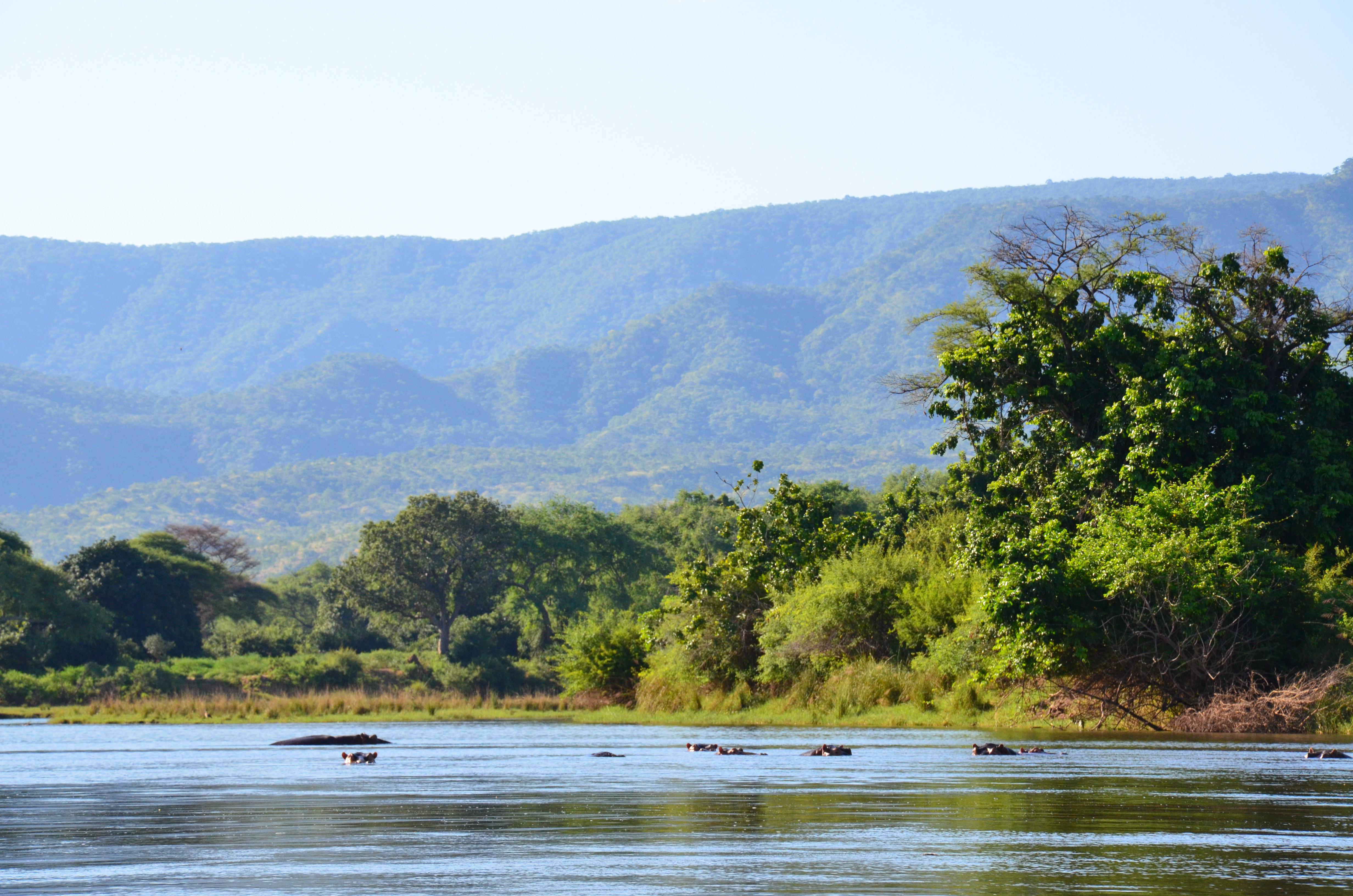 Woman in Zambezi